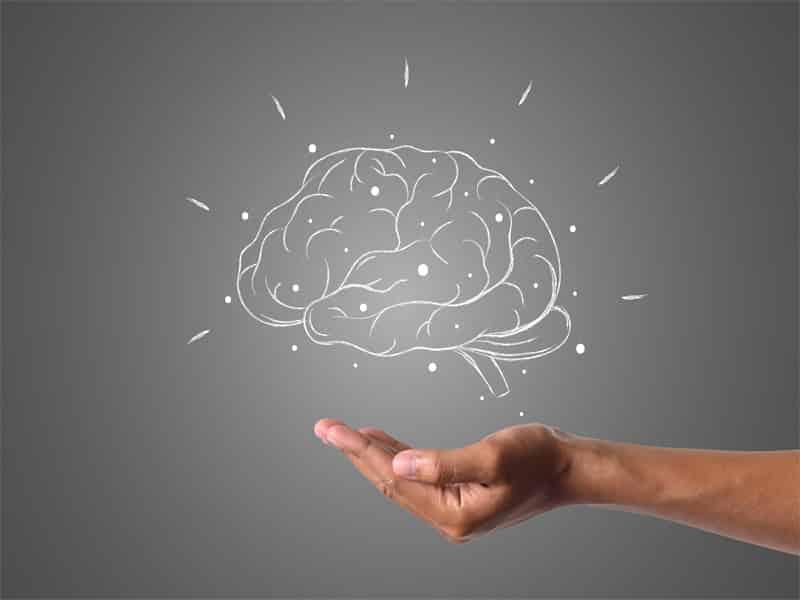 English Blog, World Brain Day