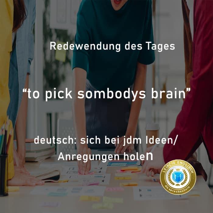 english idiom, pick brain