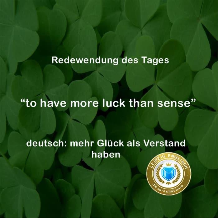english idiom, more luck than sense